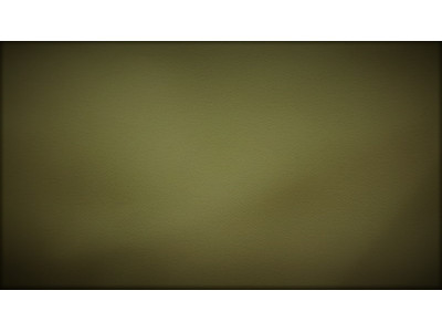 Димаут арт. 99 129-27 оливковый