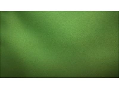 Димаут арт. 99 129-22 зеленый